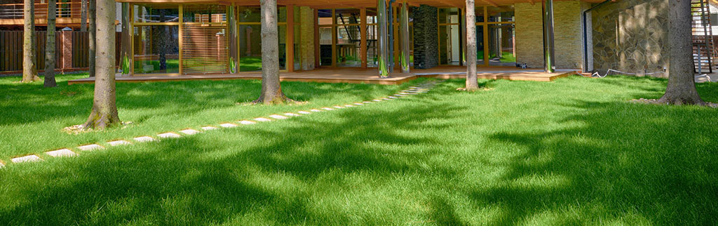aquaduct_tall-fescue_turf-merchants