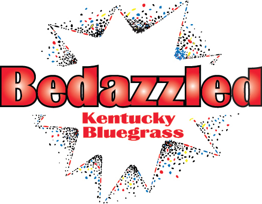 bedazzled-2