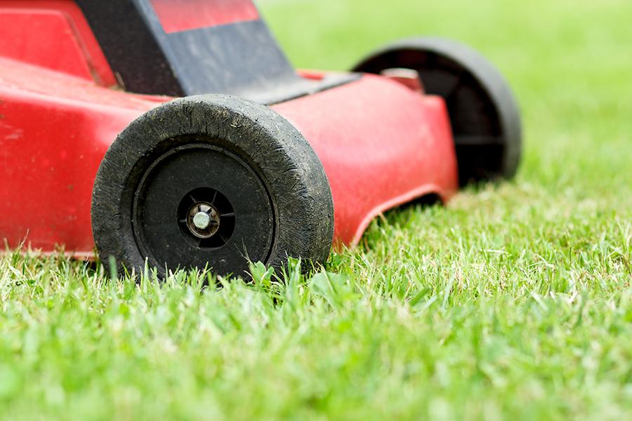 lawn-maintenance_1_turf-merchants