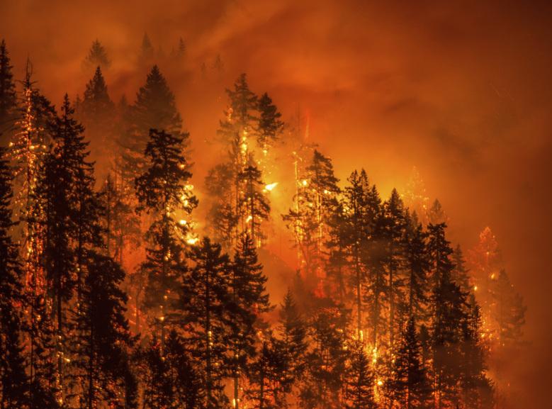 oregon-wildfire_credit-katu-tv