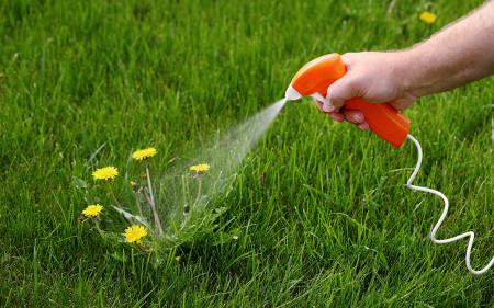 weed-control-spraying_turf-merchants